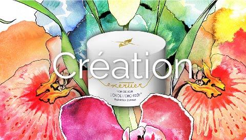 CREATION copie